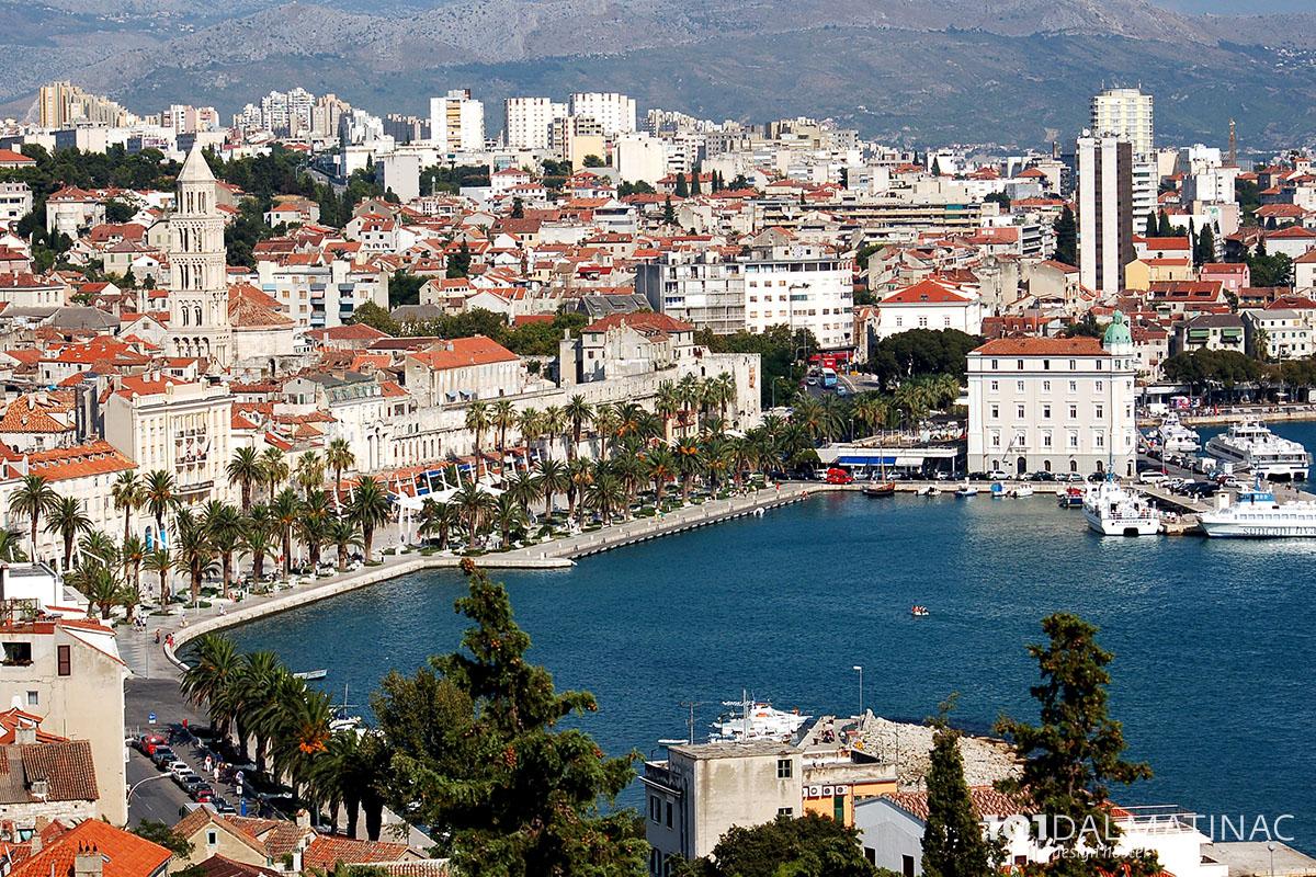 101 Dalmatian   Design hostel ...